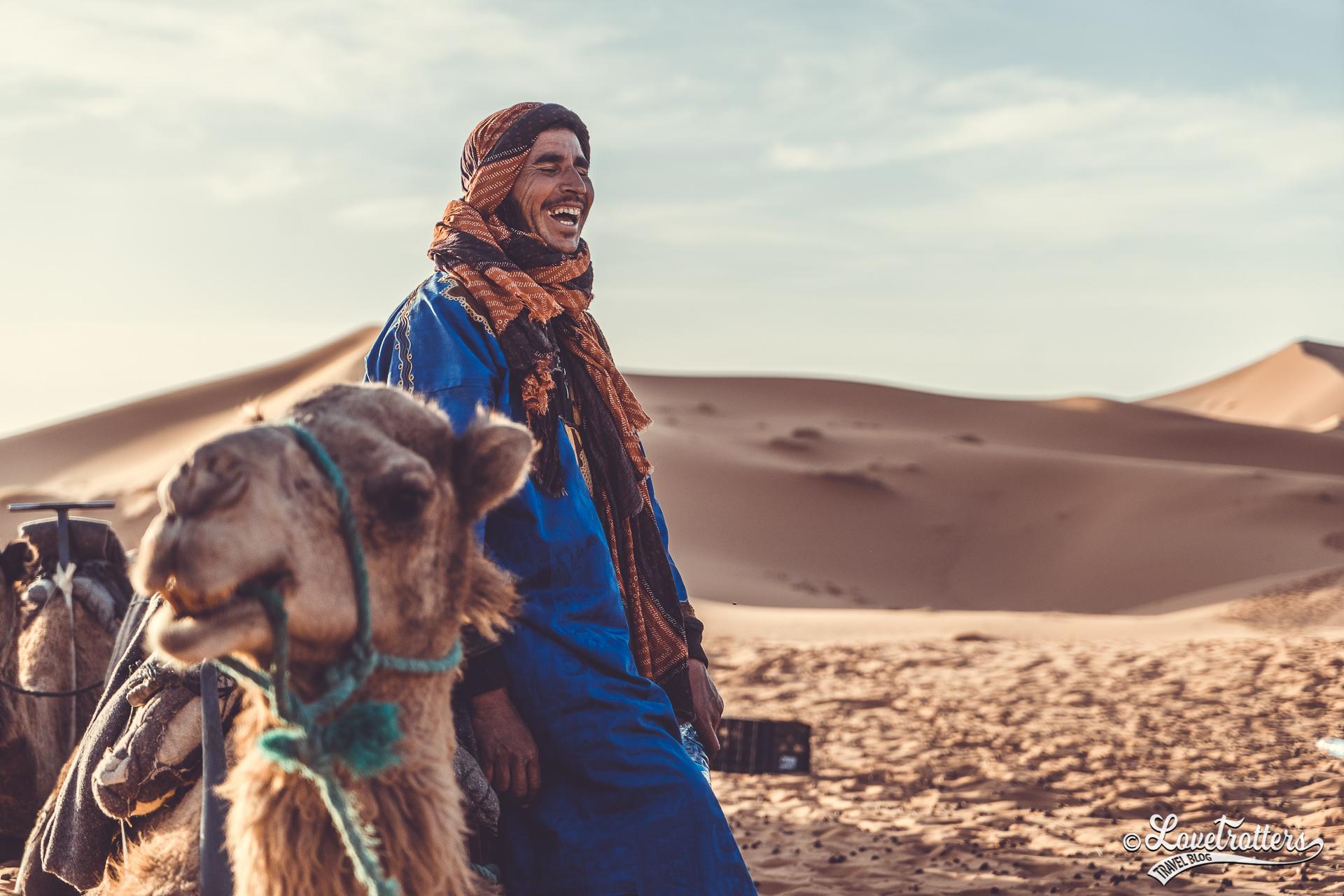 Chamelier dans le désert de Merzouga