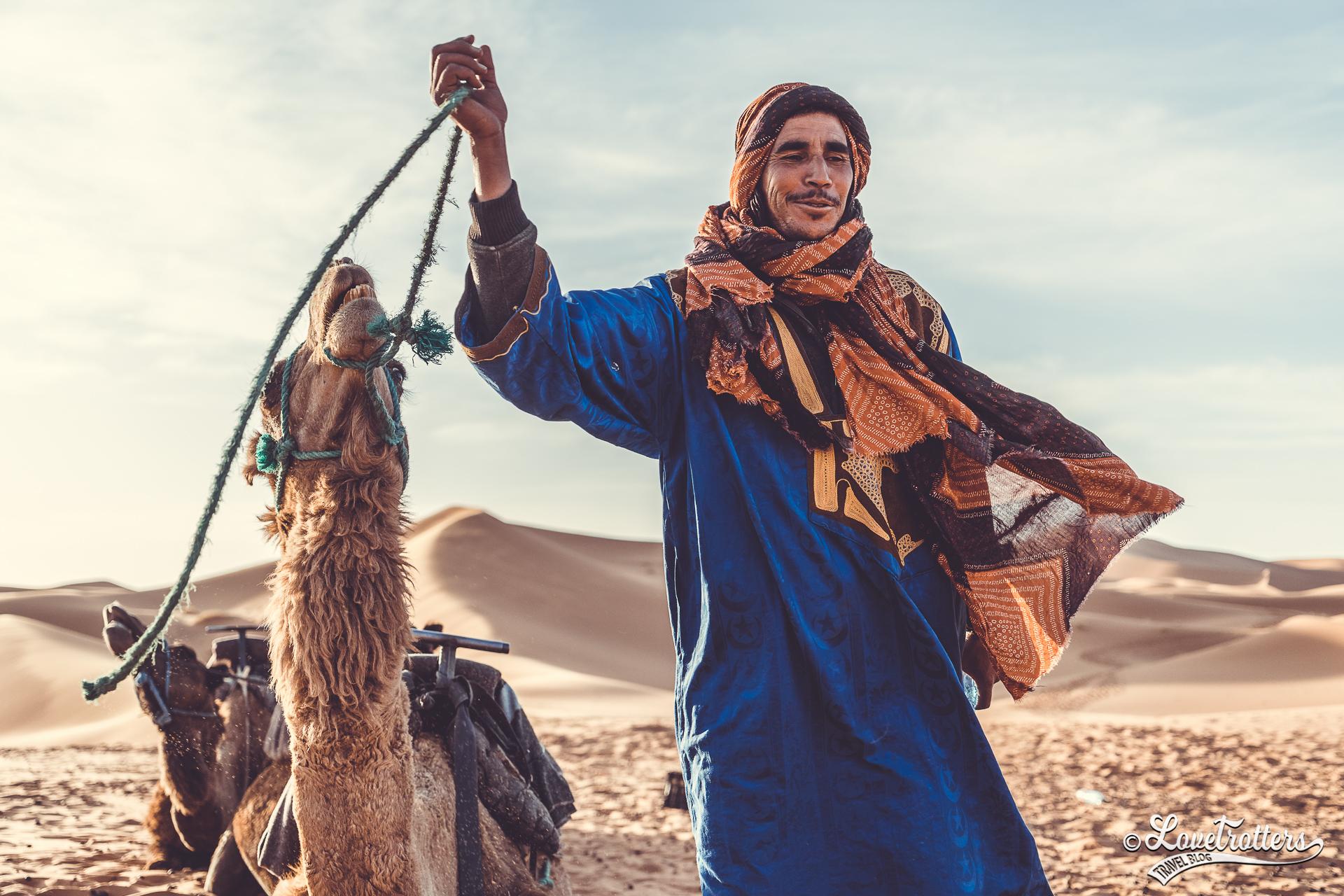 Chamelier berbère à Merzouga