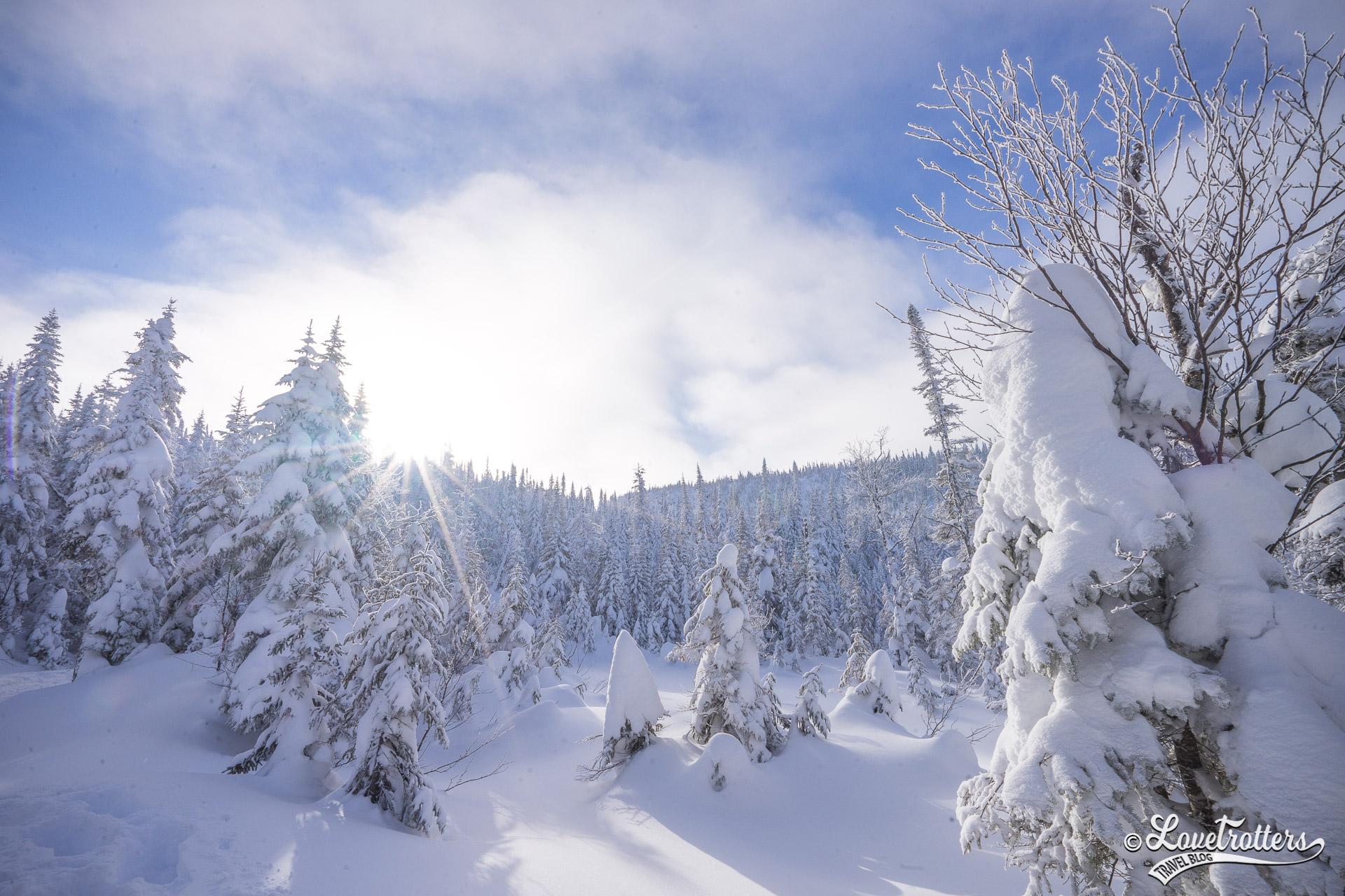 Voyage en amoureux hiver au québec
